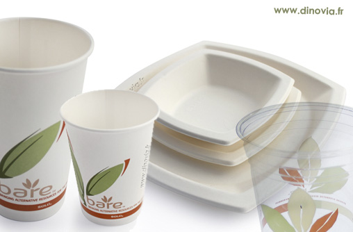 assiettes jetables et gobelet carton