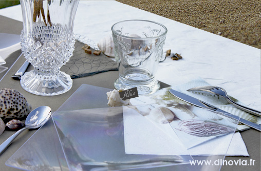 Mariage dinovia vaisselle jetable et d coration de table for Decoration 50 ans homme