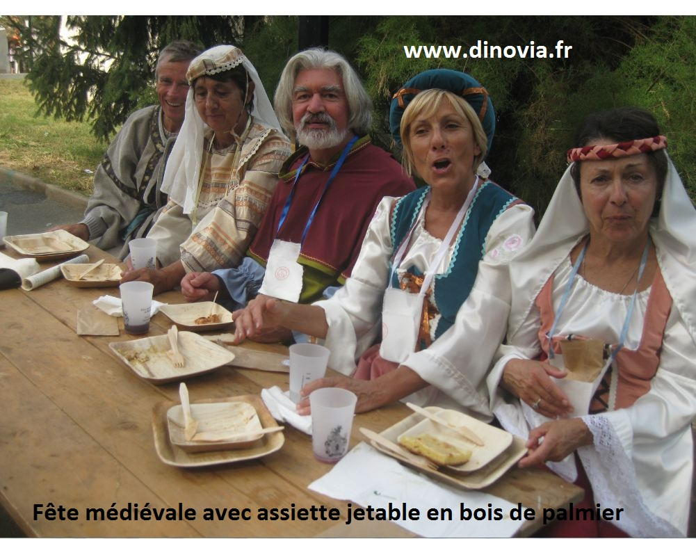 Vaisselle Bois DINOVIA Vaisselle jetable et décoration de table # Vaisselle Jetable En Bois