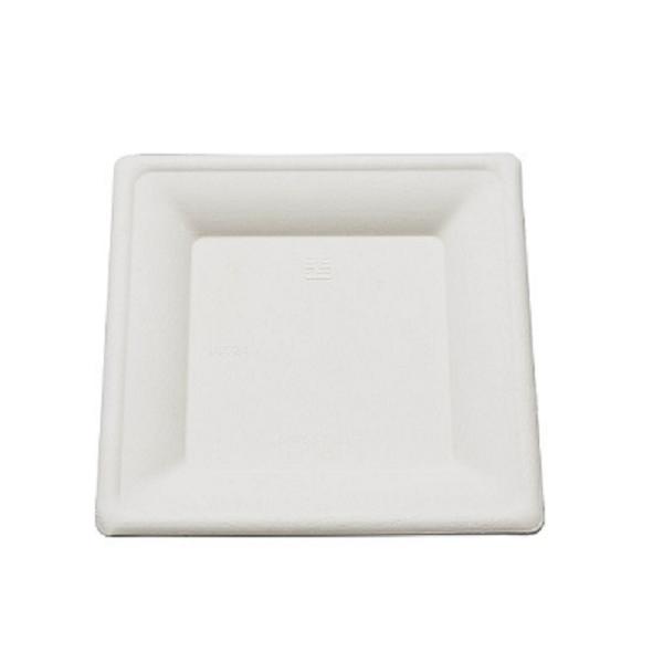 assiette canne a sucre carrée 20 cm