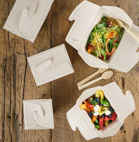 boites alimentaires compostables canne a sucre