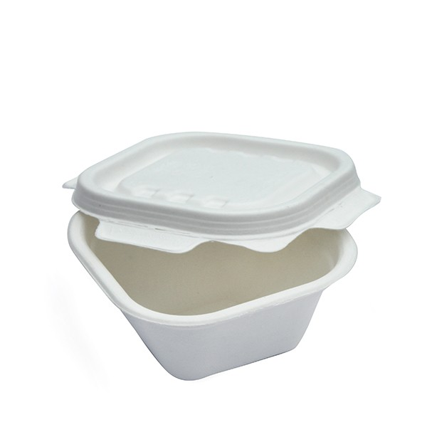 Barquette compostable carrée